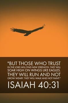 May God give you the strength you need to finish strong! Wings Like Eagles, Isaiah 40 31, Finish Strong, Biblical Inspiration, Encouragement, Religion, Strength, Believe, Spirituality