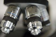 """Le 9 domande da fare quando acquisti un microscopio : """"senza farti fregare """" - Maurizio Autunno"""
