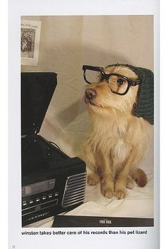 Hipster Puppies. Who wouldn't read this book?!