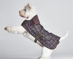 barbour black quilted dog coat