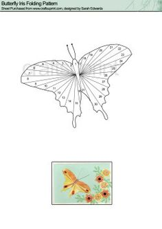 Home : Iris Folding : Animals : Butterfly Iris Folding Pattern