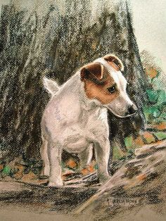 Adorable Jack Russel Dog art by M Theresa Brown Looks just like my little Aiki Perros Jack Russell, Jack Russell Dogs, Jack Russell Terrier, Animal Paintings, Animal Drawings, Terriers, Dogs And Puppies, Maltese Puppies, Comic Art
