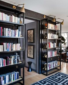 shelving against dar walls w lighting above in brass