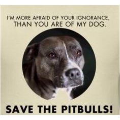 Save the Pit Bulls