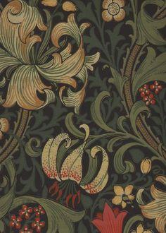 Golden Lily 210403 - Seinäruusu - Verkkokauppa