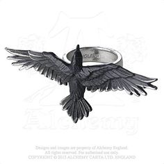 Black Consort Odin's Companion Winged Raven in Flight Three Finger Ring by Alchemy Gothic