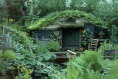little cottage in the forest..