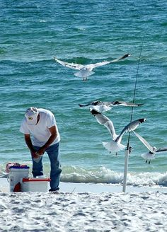 St. George Island State Park, Florida, is barrier island off the Florida Panhandle, southwest of Tallahassee. It's popular for swimming and sunbathing plus birding, hiking and camping. Anglers fish for flounder, sea trout, Spanish mackerel and more.