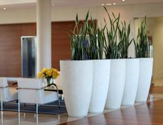 Plantas que dividen ambientes. Separar ambientes sin obras