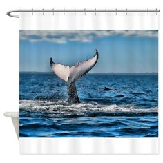 Whale Tail 1 Shower Curtain on CafePress.com