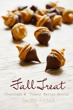 peanut butter and chocolate acorns. So cute!! #fall #food #acorns