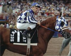The greatest horse of all time..