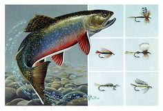 Gift the fishing enthusiast in your life with a print of the 1987 Nevada State Trout Stamp. A great addition to any hunting/fishing cabin, man cave or decor. Only $75.00 for the print.