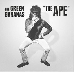 Record of the Day  The Ape by The Green Bananas