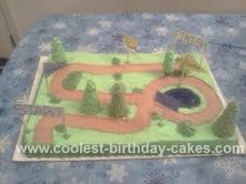 Homemade Cross Country Course Cake: This Cross Country Course Cake was made for my children's cross country banquet!  It is 2 11x15 cakes baked and placed side by side! I made the signs a