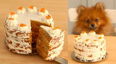 Recipe with video instructions: Made with carrots, cream cheese and other dog-friendly ingredients, this is an easy, delicious treat for any 4-legged friend. Ingredients: 1 cup grated carrots (approx. 1 large carrot), 1 large egg, ½ cup canned sardines, drained and shredded, ¼ cup sunflower seed oil, ¼ cup water, 1 cup whole wheat flour, cooking spray, 1 ½ cups cream cheese, room temperature, sliced carrot