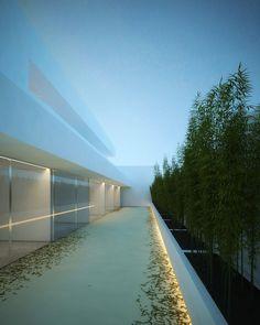 Fran-Silvestre-atrium-house