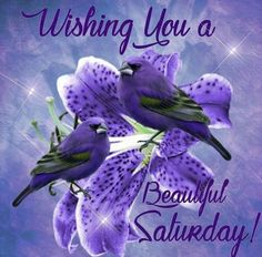 Wishing You A Beautiful Saturday Quote good morning saturday saturday quotes good morning quotes happy saturday saturday quote happy saturday quotes quotes for saturday good morning saturday beautiful saturday quotes saturday quotes for family and friends Good Morning Saturday Images, Happy Saturday Quotes, Saturday Greetings, Saturday Saturday, Morning Morning, Good Morning Flowers, Good Morning Greetings, Good Morning Good Night, Good Morning Wishes