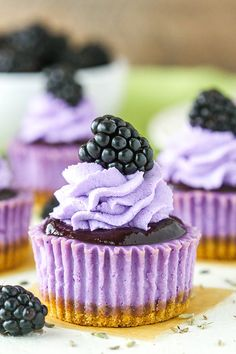 These Mini Blackberry Lavender Cheesecakes are made with lavender cheesecake, blackberry topping, whipped cream and a fresh blackberry on top! Don't let these little treats fool you - they are AMAZING! Blackberry Dessert, Blackberry Cheesecake, Mini Cheesecake Recipes, Cupcake Recipes, Cupcake Cakes, Dessert Recipes, Oreo Cheesecake, Mini Desserts, Blackberry Cupcakes