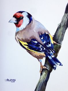 ORIGINAL WATERCOLOR PAINTING European Gold Finch on the branch