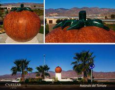 El tomate puede ser, posiblemente, la insignia estrella de Almería. A nosotros nos encanta, como también nos encantó este simpático encargo del Ayuntamiento de Níjar. ¡Mirád qué tomate más grande!