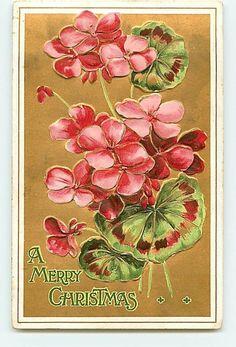 Vintage Christmas Card ~ Pink Geraniums