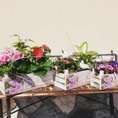 Composizioni floreali per interni