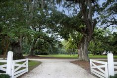 Davant Plantation is a 2040 acre hunting property ideally located between the historic seaports of Charleston and Savannah.