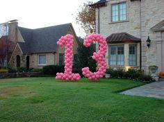 Yard Balloon Number 13