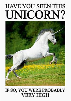 Have You Seen This Unicorn? Funny Birthday Card #FunnyCards #BirthdayCards #DeanMorrisCards #LOL #RudeCards #GreetingCards  #FunnyBirthdayCards