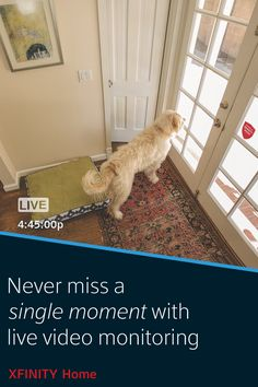 Protect your family and home and look after them from anywhere with XFINITY Home. With additional equipment, get live video monitoring so you can see that your kids got home safely, control your thermostat and turn on lights so you never come home to a dark house again, and much more.