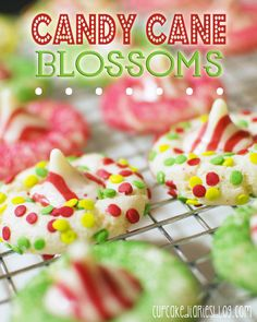 Candy Cane Blossoms #cookie #Christmas   cupcakediariesblog.com