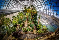The crown jewel of the Myriad Botanical Gardens in Oklahoma City is the Crystal Bridge Tropical Conservatory, a 224 foot-long round glass structure that houses plants from every continent besides Antarctica. It is exceptionally beautiful year round.