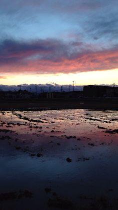 今日の散歩中の夕焼け。