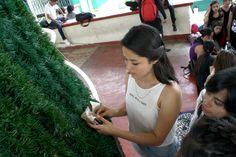 Alumnos del #P01Cuernavaca del #Cobaem_Morelos iniciaron los preparativos para el #FestivalNavideño2016 #juventudcultayproductiva