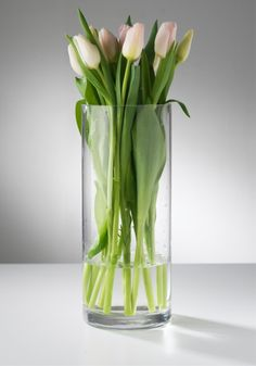 LIVING Tulips, Glass Vase, Table Settings, Boards, Home Decor, White Flowers, Beauty, Bunch Of Flowers, Planks