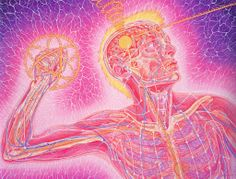 Activating the pineal gland is a key point in the next stage of human evolution.