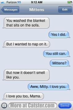 Texts From Mittens: The Holiday Family Photo Edition | Catster