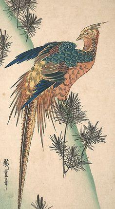 Pheasant and Pine-trees on Snowy Hillside Poster Print by Utagawa Hiroshige (Japanese, Tokyo (Edo) Tokyo (Edo)) x Asian Artwork, Japanese Artwork, Japanese Tattoo Art, Japanese Painting, Japanese Prints, Japanese Bird, Art Chinois, Art Japonais, Art Graphique