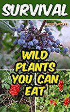 Wild edibles, found food, God's garden - all common phrases for the same thing - wild plants you can eat! Here are numbers 21-30 for your education.