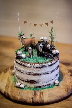 Rustic Alpaca forest cake with edible moss, chocolate logs and meringue mushrooms #rustic #cake #forest #alpacas #ediblemoss #meringuemushrooms