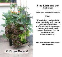 2015-07 KUBI des Monats Lanz Schweiz
