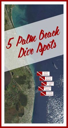 5 DIVE SPOTS in PALM BEACH - 1. Zion Train 2. Rolls Royce 3. Gilbert Sea 4. Princess Anne 5. Flower Gardens #palmbeach #palmbeachdivespots