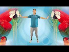 Energizer de papegaaien dans | Digibord Startpagina