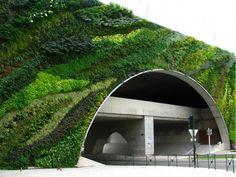 Como hacer Muros Verdes y Jardines verticales - Taringa! #techosverdes