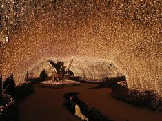 Millions of fairy lights via Ambient Lighting / Wedding Style Inspiration / LANE