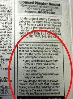 A dragon quest...