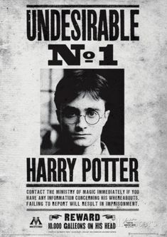Harry Potter (Undesirable No1) Movie Poster Masterprint                                                                                                                                                                                 Plus