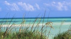Bahia Honda State Park -- I wish I was in these warm waters again. (photo by seventhheaven)