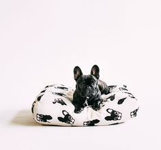 Frenchie Pattern Floor Cushion French Bulldog design - Modern Dog Bed - Pouf Cover - Kiddies Room Floor Cushion - Modern Fun Floor Cushion